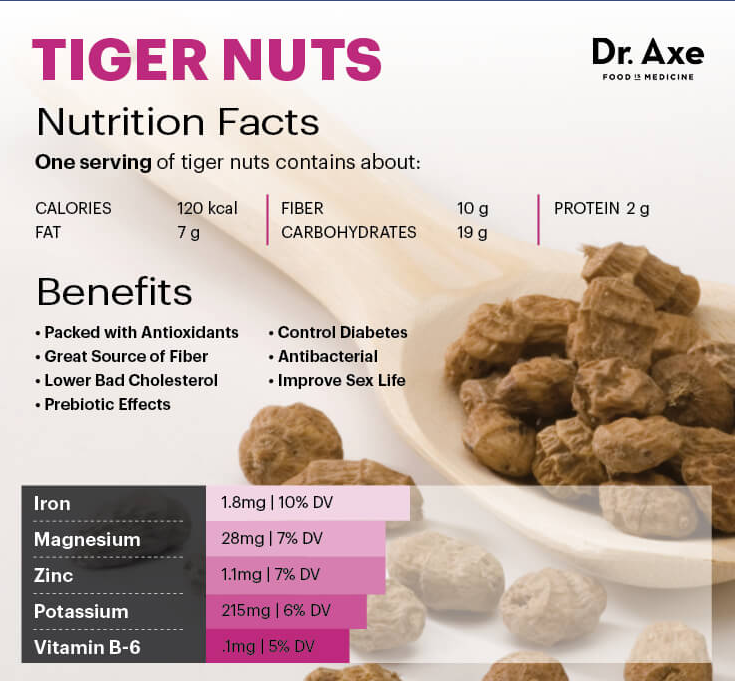 Dr Axe On The Health Benefits Of Tiger Nuts The Tiger Nut Company Uk Chufa Tigernut Supplier